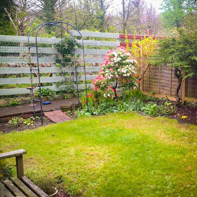 Small domestic garden, Edinburgh - Laing Landscape Design