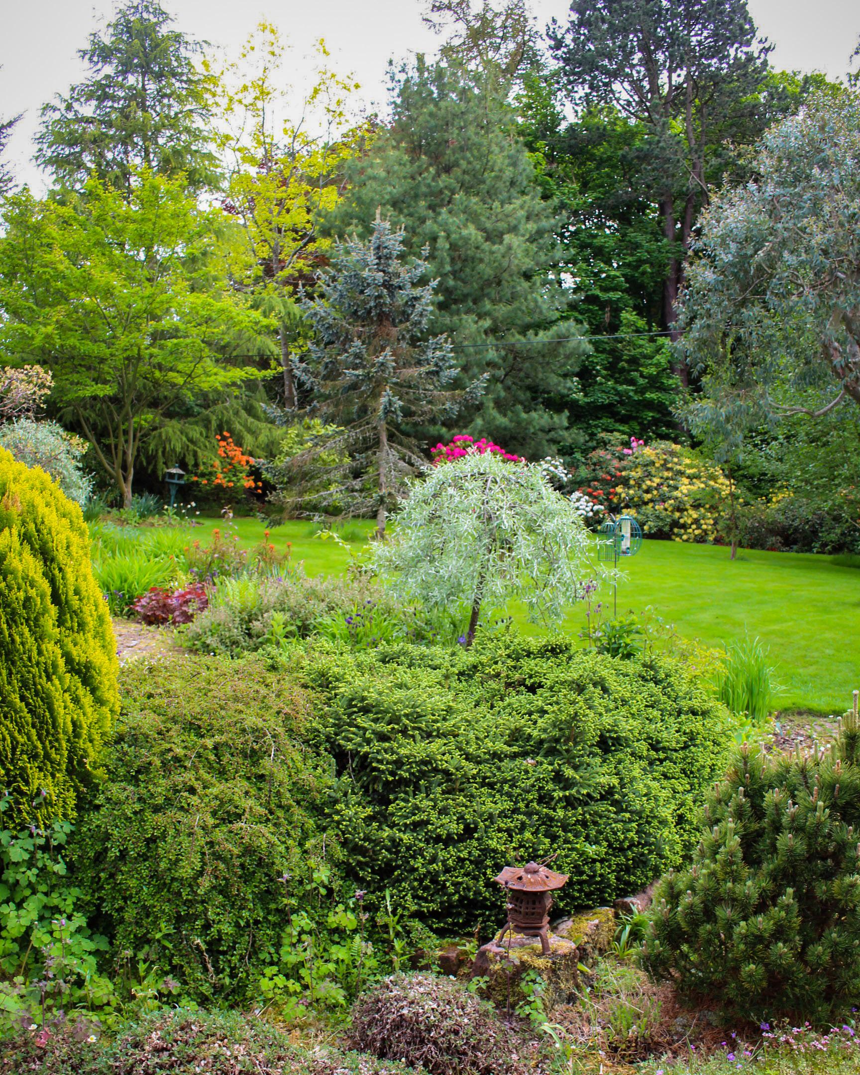 Established garden, Edinburgh outskirts - Laing Landscape ...