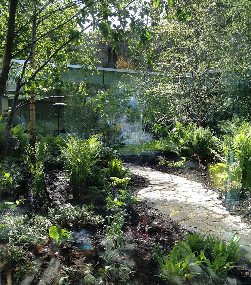 A random stone path winds through a courtyard planting scheme